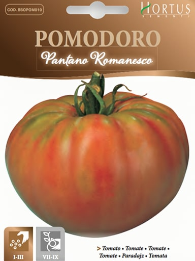 Pomodoro Pantano Romanesco