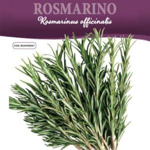 Rosmarino