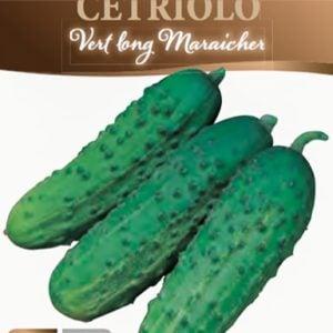 Cetriolo Vert Long Maraicher