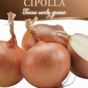 Cipolla Texas early grano