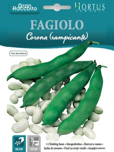 Fagiolo Corona