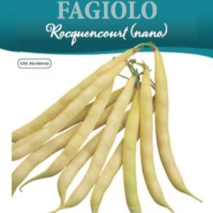 Fagiolo Rocquencourt