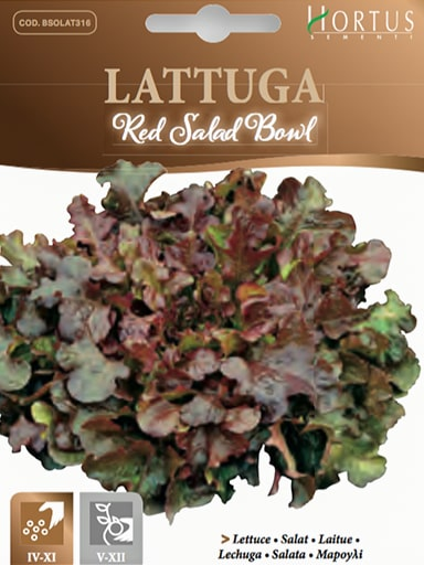 Lattuga Red Salad Bowl