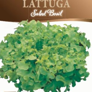 Lattuga Salad Bowl