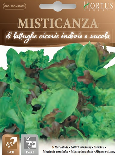 Misticanza insalata