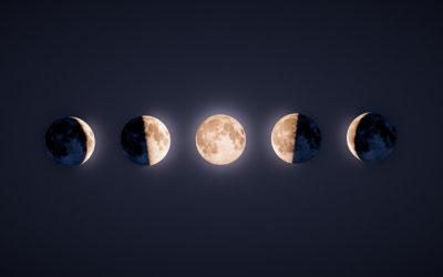 Orto e luna ascendente o discendente: cosa fare?