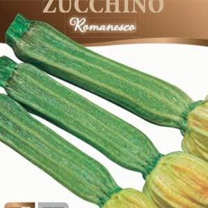 Zucchini romanesco