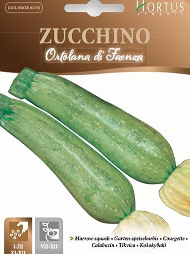 Zucchino di Faenza
