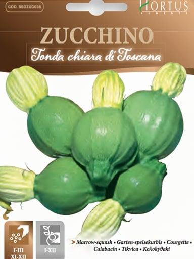 Zucchino tonda chiara di Toscana