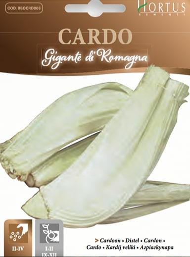 Cardo Gigante di Romagna