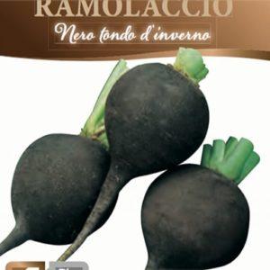 Ramolaccio Nero
