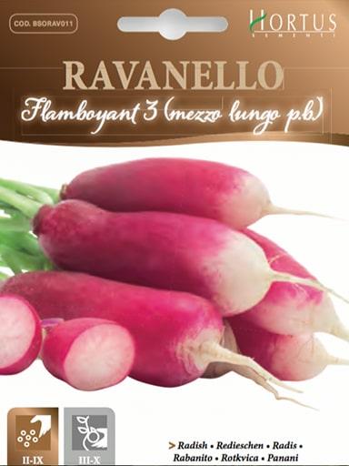 Ravanello Flamboyant 3 (Mezzo lungo P.B.)