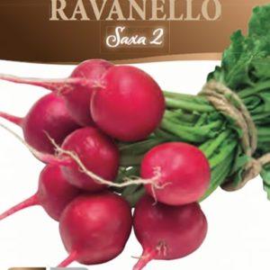 Ravanello Saxa 2