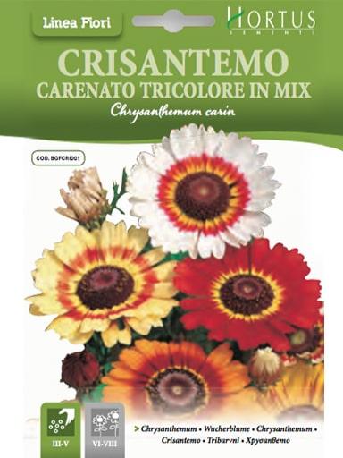 Crisantemo carenato tricolore