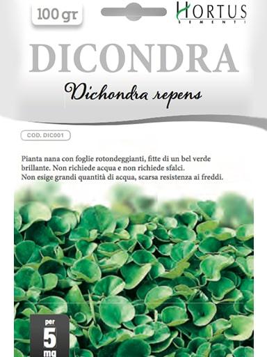 Semi Dichondra