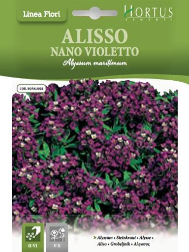 Alisso Nano Violetto
